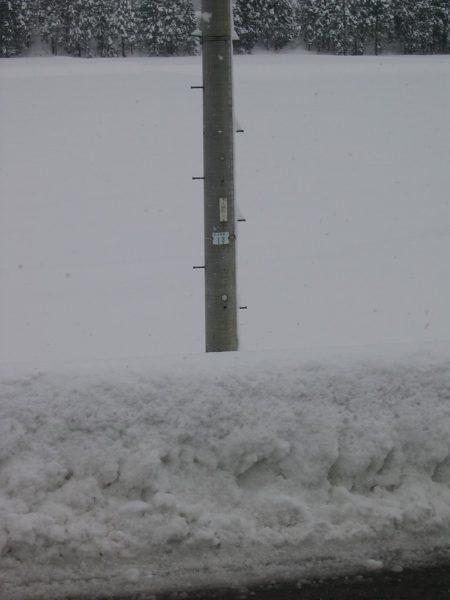 道路脇の雪の壁が人の背丈ほどになっています
