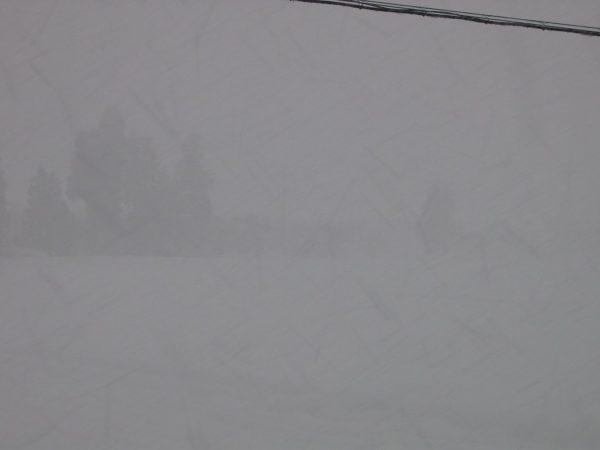 魚沼産コシヒカリの田んぼは大雪になりました