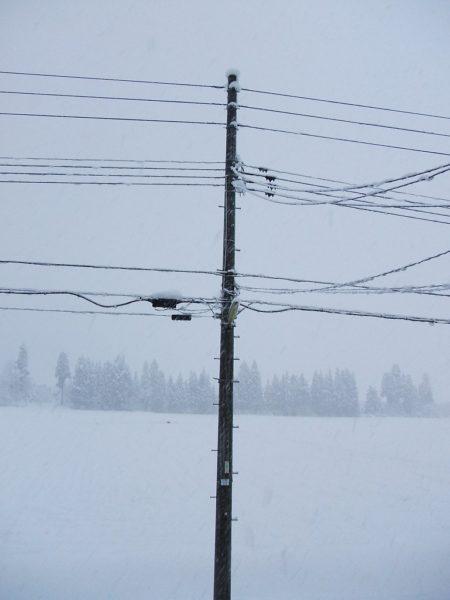 ようやく冬らしくなってきました