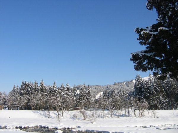 快晴の青空と水無川の雪景色