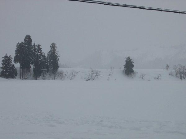 雪が降ったり止んだりしています