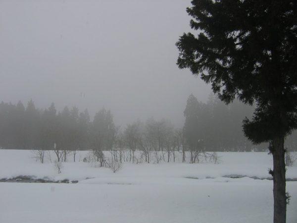 雨に煙る水無川の雪景色