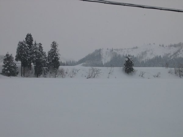 雪が降っているわりに積雪が増えません