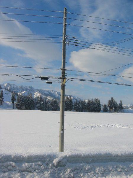 昨晩から今朝にかけて雪が少し積もりました