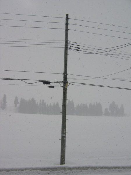 やや強く雪が降っています