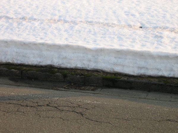 道路脇の雪はもう壁ではありません