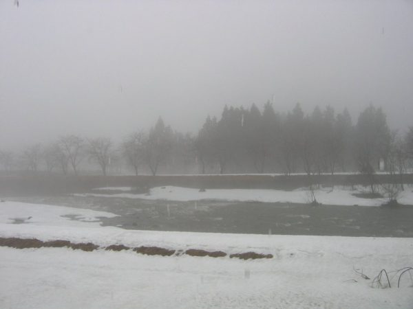 水無川の土手の外側の土が出てきています