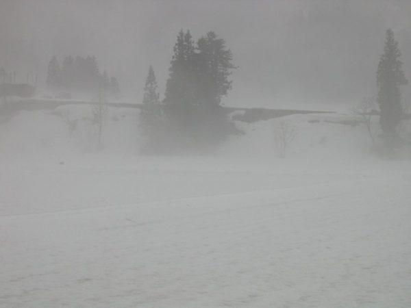 雨降りで雪解けが進む田んぼ