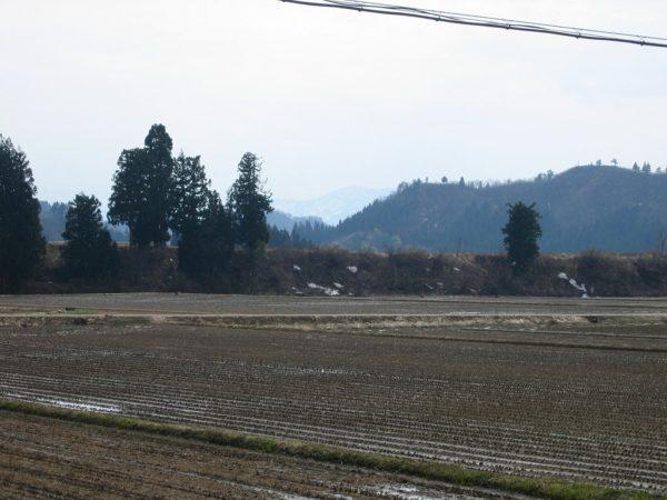 今日の新潟県南魚沼市は暖房が要らないくらいにあたたかくなっています