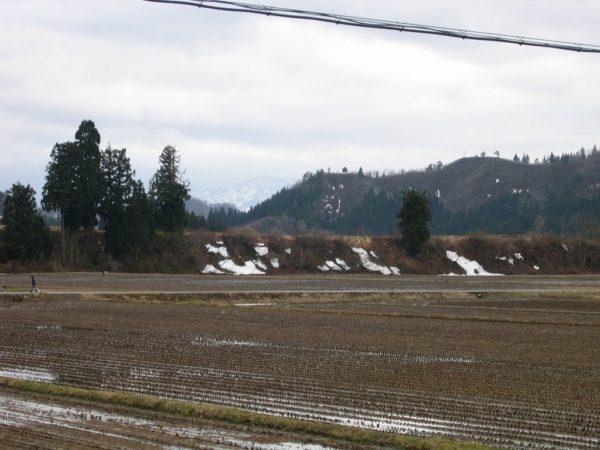 田んぼの雪がほとんど解けました