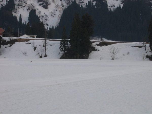 雪解けが進んで田んぼの土が見えてきました
