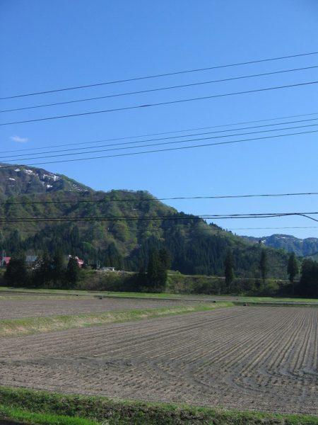 青空が広がっていい天気になっています