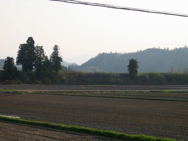 新潟県南魚沼市は気温が上がって夏を感じるような天気でした